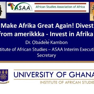 Make Afrika Great Again! Divest from amerikkka - Invest in Afrika!