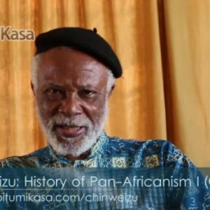 Chinweizu: History of Pan-Africanism I [Offline Course]